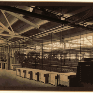 Warehouse early 1900's
